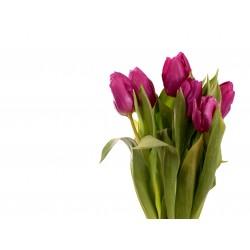 Karta podarunkowa Kwiaty